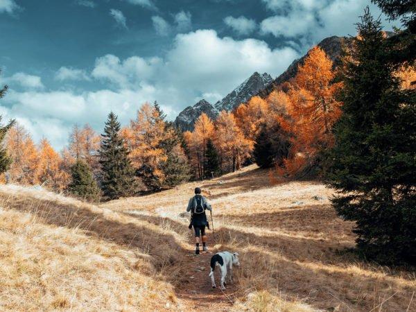 Füchslhof - Herbst